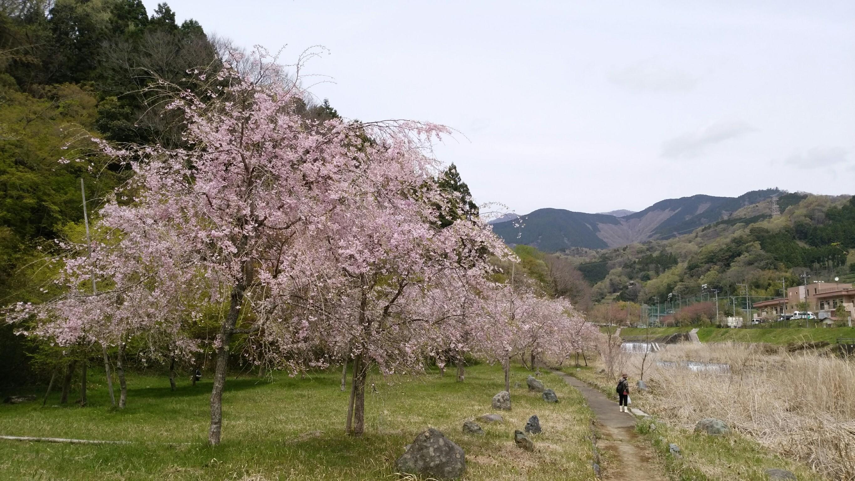 松田 町 県 神奈川