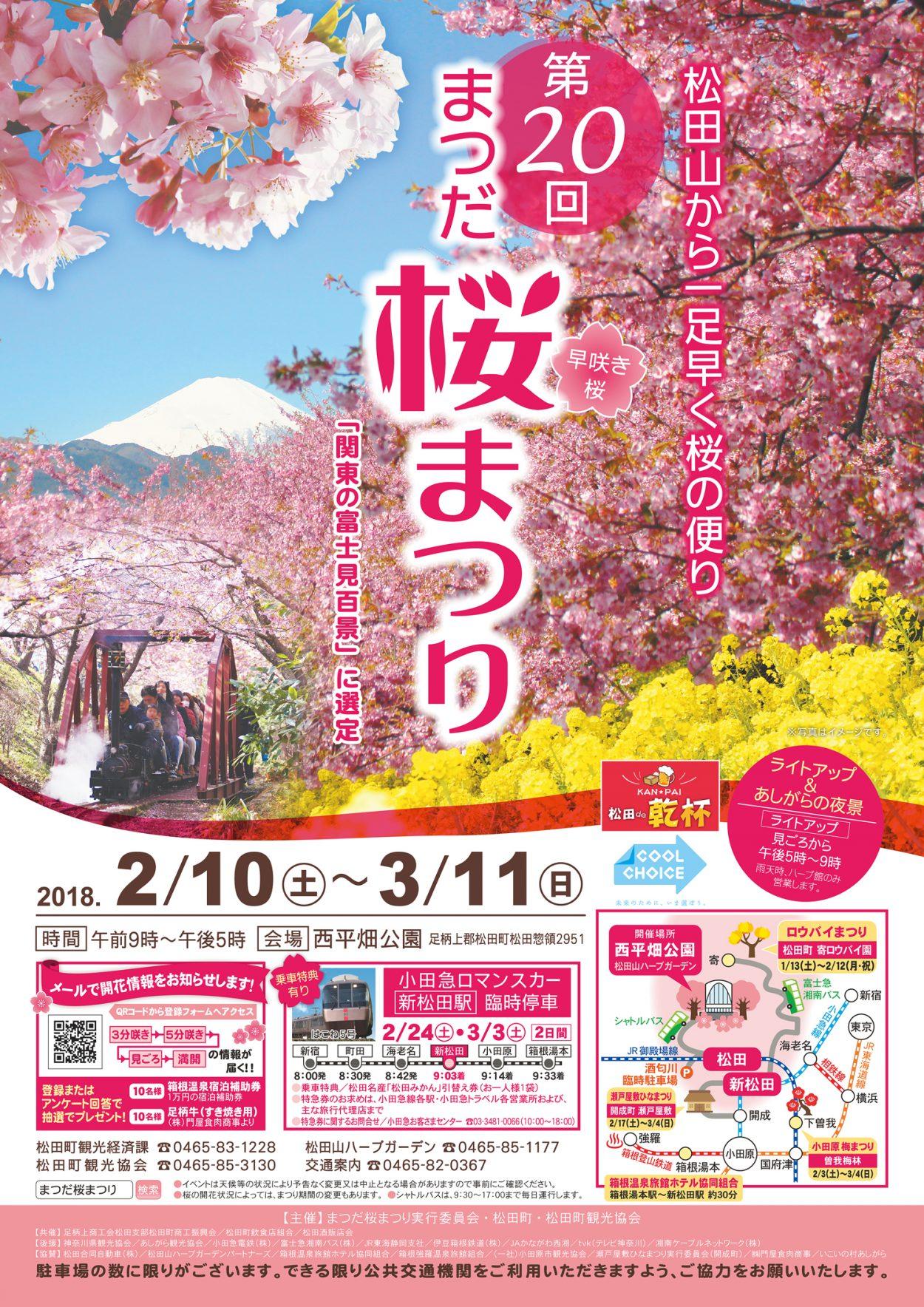 【最終】H29年度桜まつりポスターB2